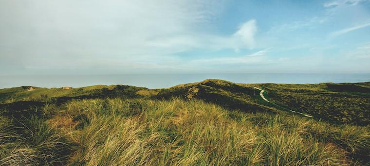 Danmarks højeste punkt